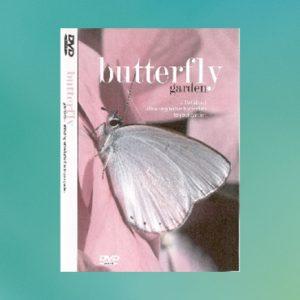 butterfly_dvd