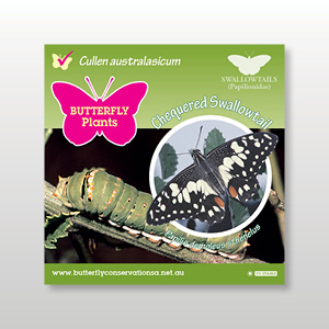 plant-tag-Chequered-Swallowtail